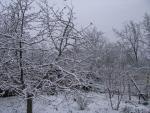 veseloe zima 2